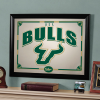 South Florida Bulls - Framed Mirror